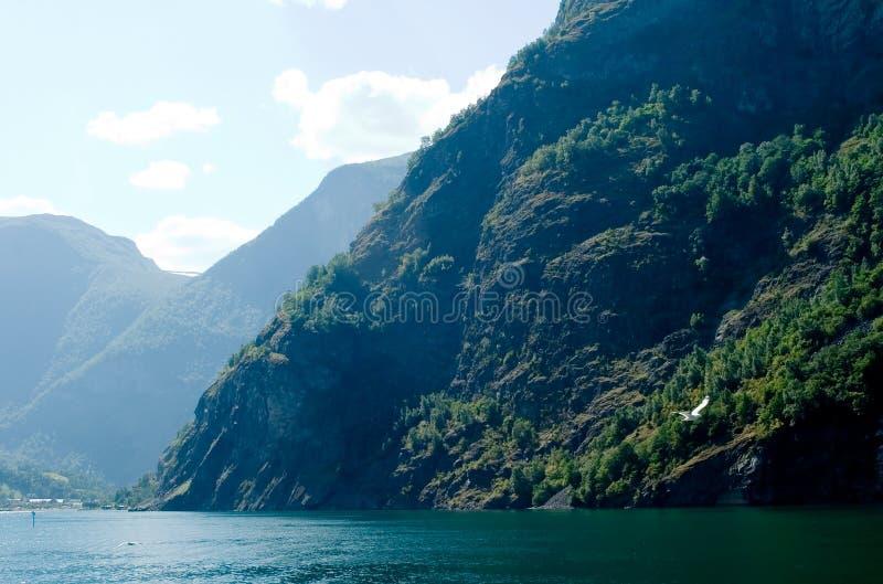Aurlandsfjord royalty-vrije stock foto's