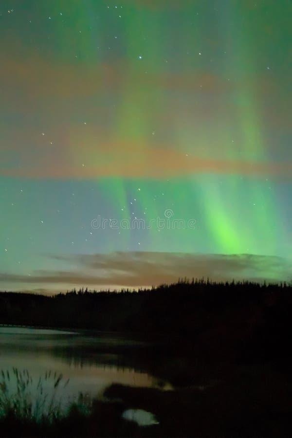 Aurora über Yukon-Fluss, nahe Whitehorse, YT, Cana lizenzfreie stockbilder