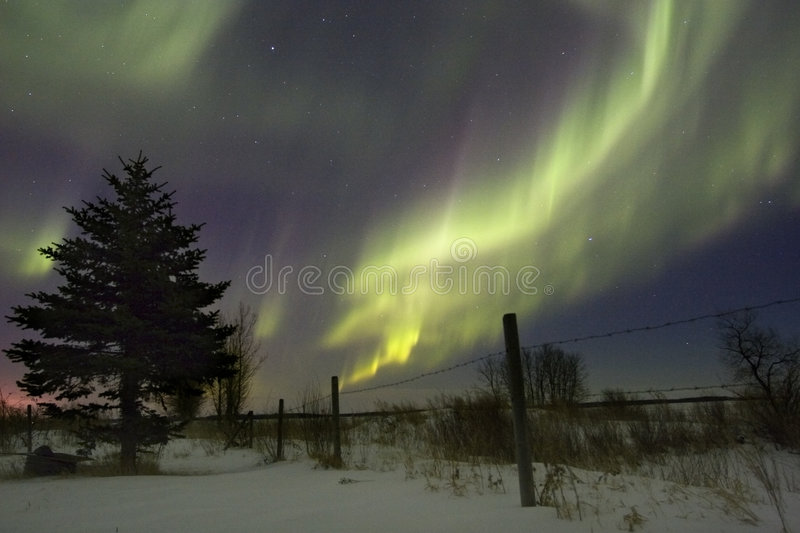 Aurora. Borealis over fields, Gilbert Plains, Manitoba, Canada royalty free stock photography