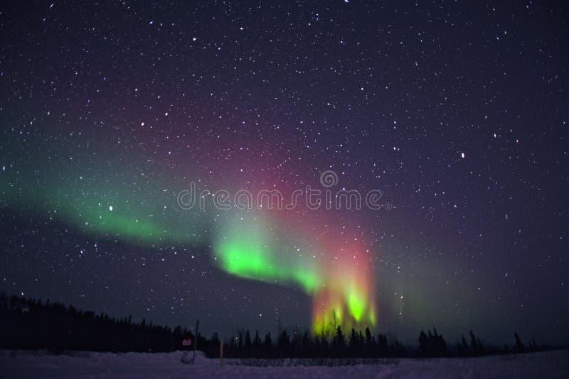 Luz do norte com fulgor vermelho espectacular fotografia de stock royalty free