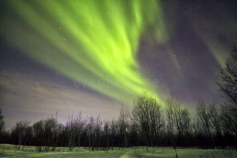 Aurora boreal imagen de archivo libre de regalías