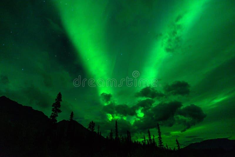 Aurora boreal Aurora Borealis Alaska Night de las montañas de Wrangell foto de archivo libre de regalías