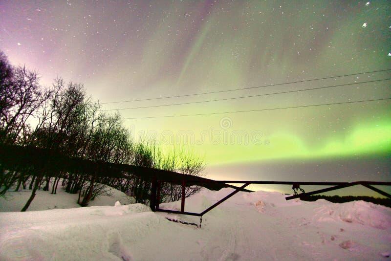Aurora boreal Aurora Borealis en Murmansk, Rusia fotos de archivo