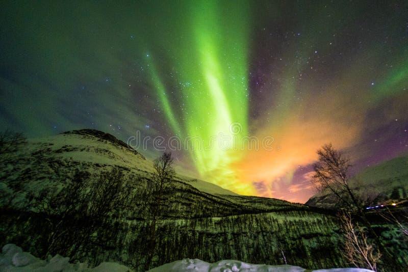 Aurora boreal, Aurora Borealis en Tromso Noruega imágenes de archivo libres de regalías