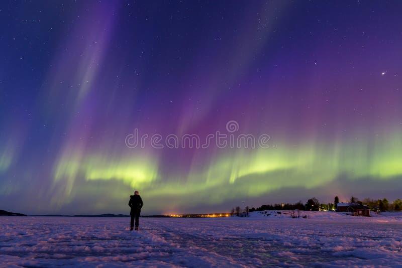 Aurora boreal colorida sobre o lago Inari, Finlandia fotografia de stock royalty free