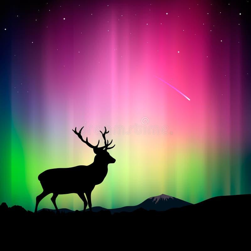 Aurora boreal com um cervo no primeiro plano ilustração stock