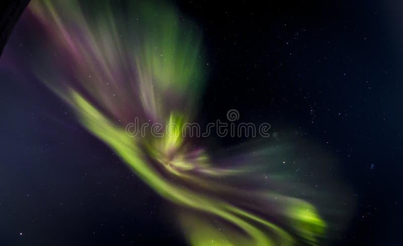 Aurora boreal com verde e o magenta fotos de stock