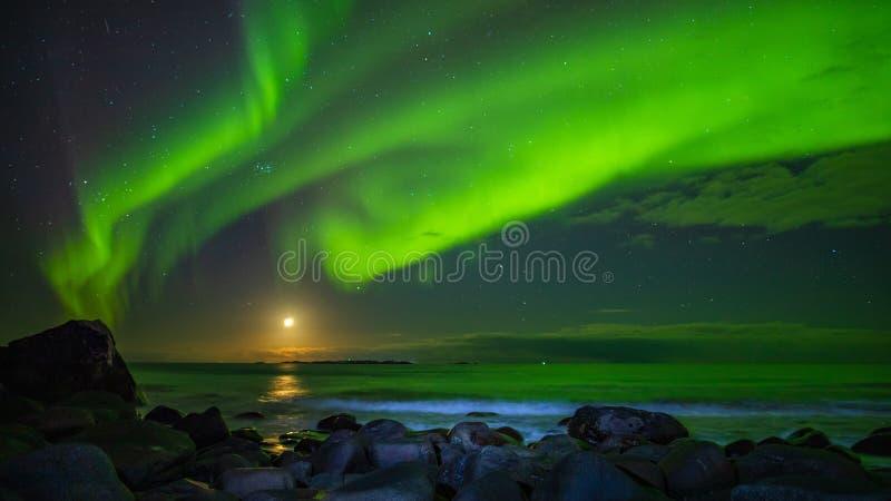 Aurora boreal e a lua na praia de Uttakleiv foto de stock royalty free