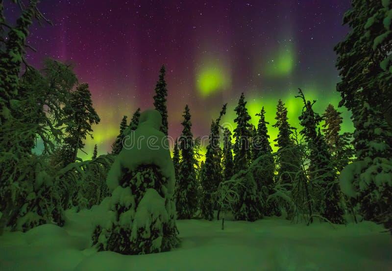 Aurora boreal en el final Laponia imagen de archivo