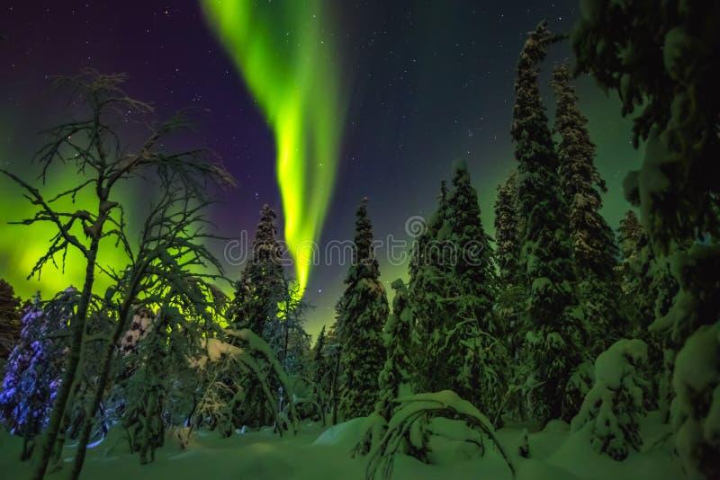Aurora boreal en el final Laponia imagenes de archivo
