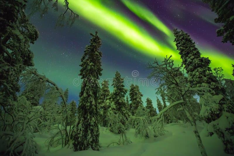 Aurora boreal en el final Laponia fotos de archivo