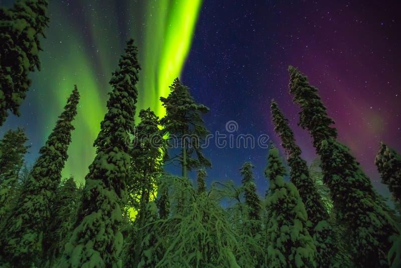 Aurora boreal en el final Laponia imagen de archivo libre de regalías