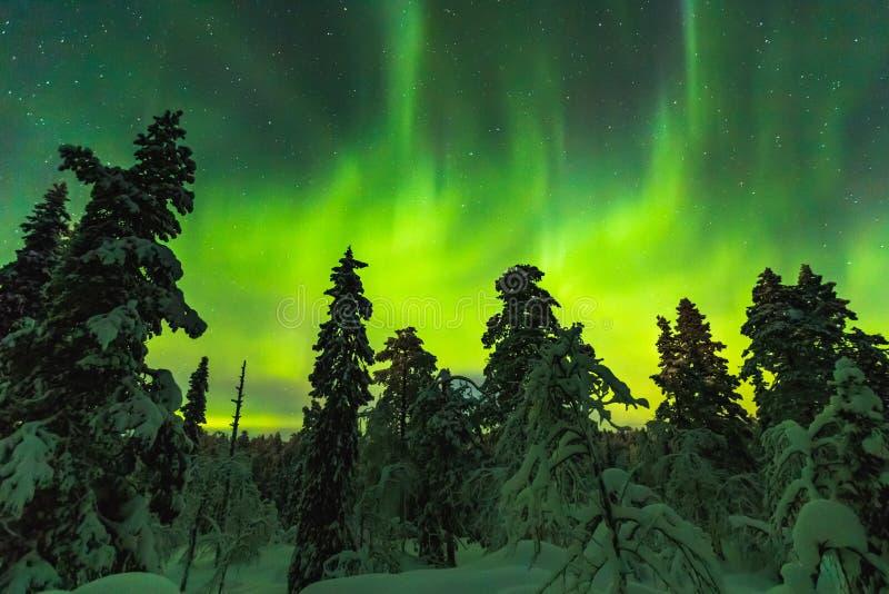 Aurora boreal en el final Laponia fotografía de archivo