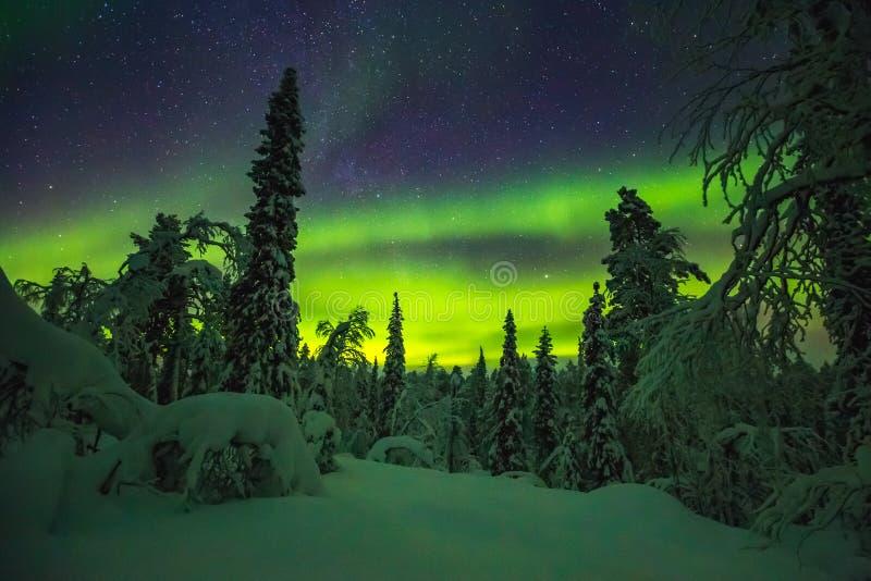 Aurora boreal en el final Laponia foto de archivo