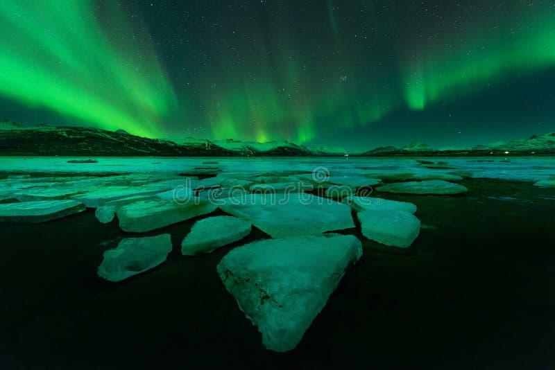 Aurora boreale (Aurora Borealis) in Islanda fotografie stock