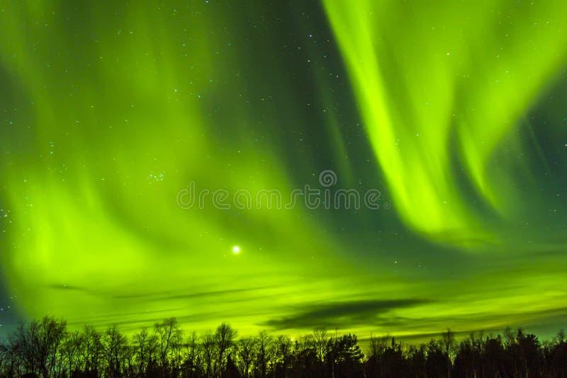 Aurora boreale spettacolare, aurora borealis sopra snowscape immagini stock