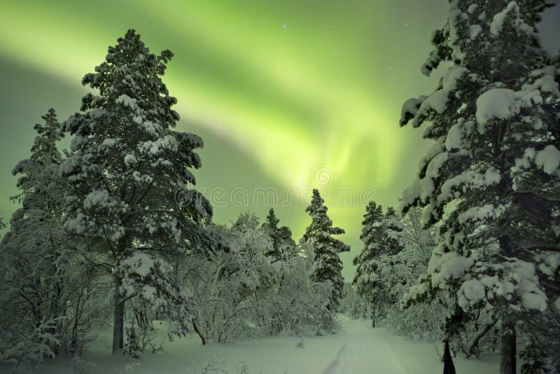 Aurora borealis über einem Weg durch Winterlandschaft, finnisches La lizenzfreies stockfoto