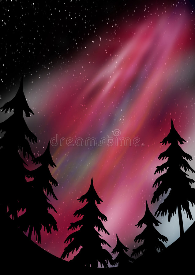 Aurora borealis. Evergreen silhouettes on a hillside with a star background and reds streaking through the sky to display aurora borealis royalty free illustration