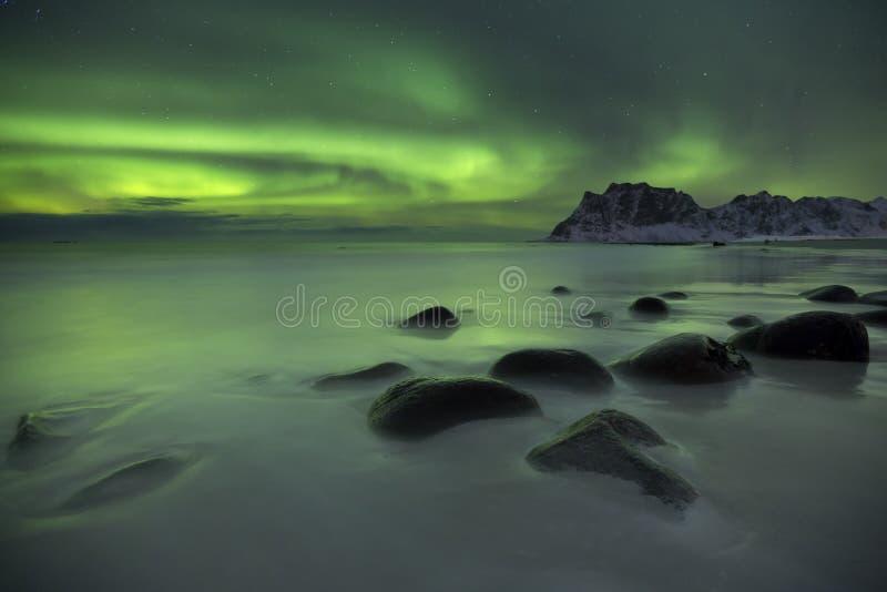 Aurora borealis au-dessus d'une plage sur le Lofoten en Norvège photographie stock libre de droits