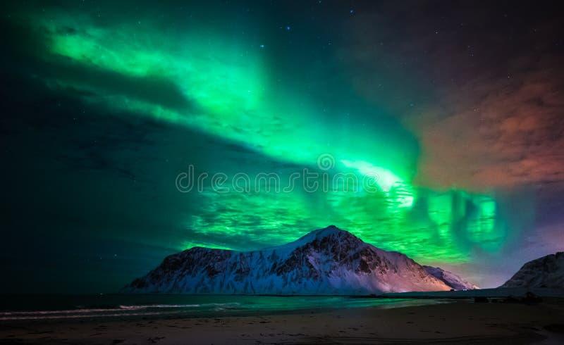 Aurora borealis au-dessus de plage de Skagsanden ?les de Lofoten, Norv?ge image stock