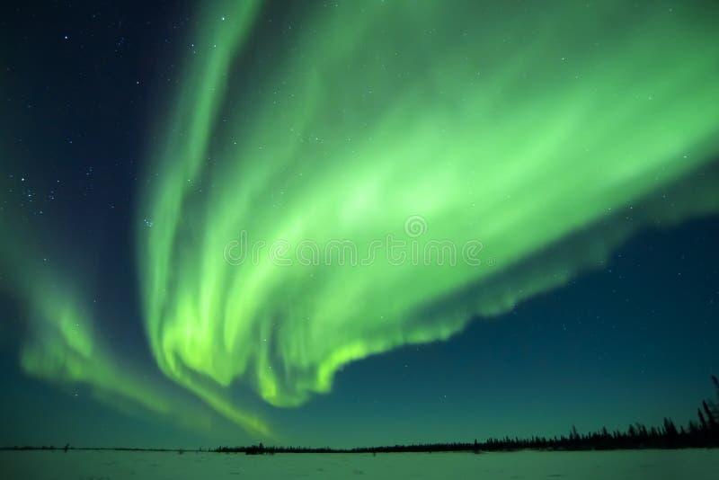 Aurora Borealis au-dessus de toundra image libre de droits