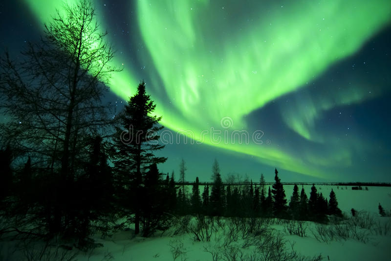 Aurora Borealis au-dessus de toundra photos libres de droits
