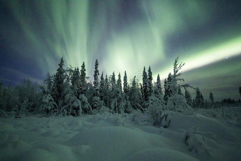 Aurora borealis (aurora boreal) en bosque de Finlandia, Laponia imagen de archivo