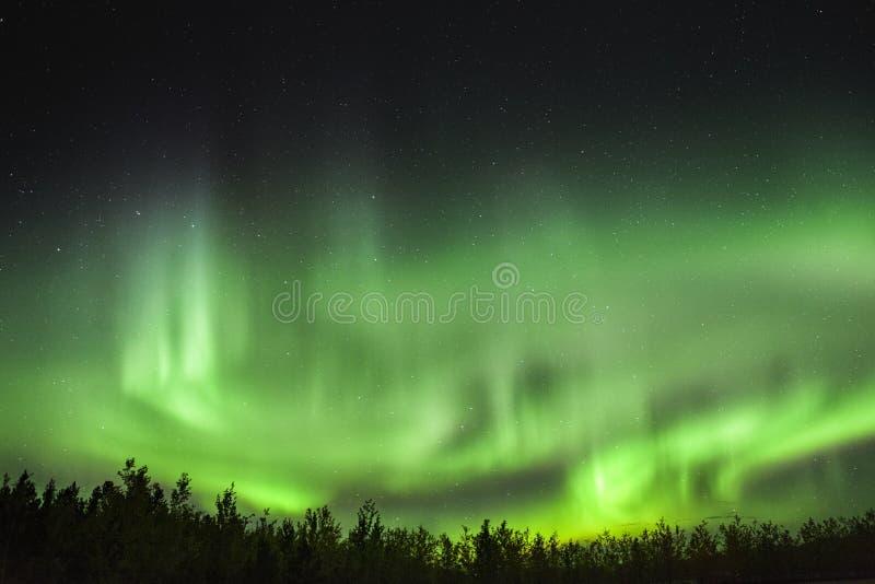Aurora Borealis, aurora boreal en los skys del territorio del Yukón, Canadá fotografía de archivo libre de regalías