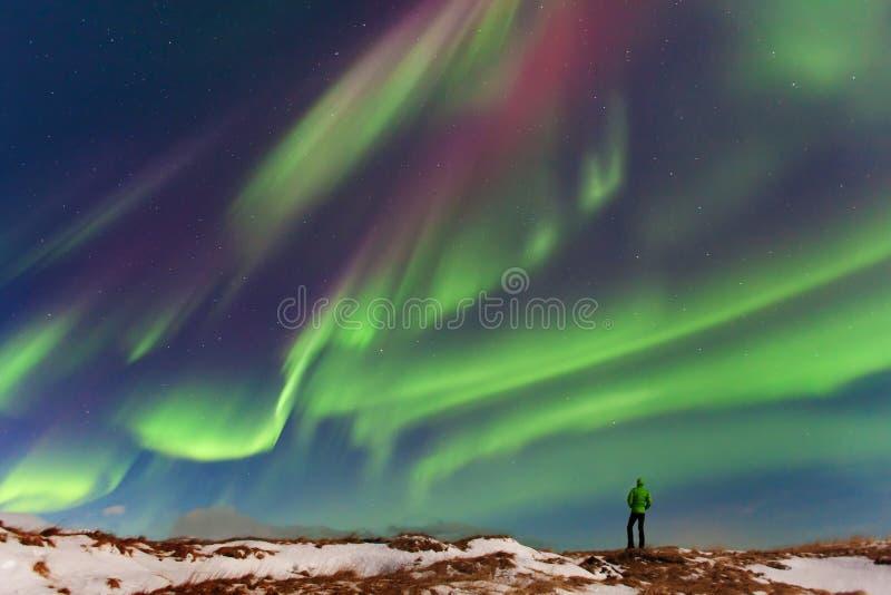 Aurora borealis boven silhouetmaa in IJsland Groene noordelijke lichten Sterrige hemel met polaire lichten stock foto's