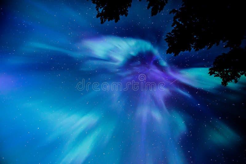 Aurora Borealis corona overhead with meteor royalty free stock photos
