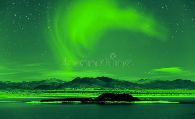 Aurora borealis de lumières du nord au-dessus des arbres photo libre de droits