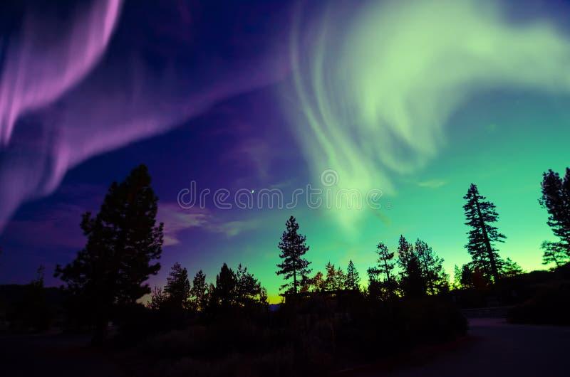 Aurora borealis de lumières du nord dans le ciel nocturne au-dessus du beau paysage de lac photos libres de droits