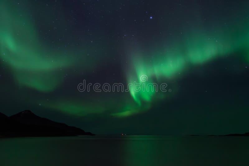 Aurora Borealis di stupore in Norvegia del nord Grotfjord fotografie stock libere da diritti
