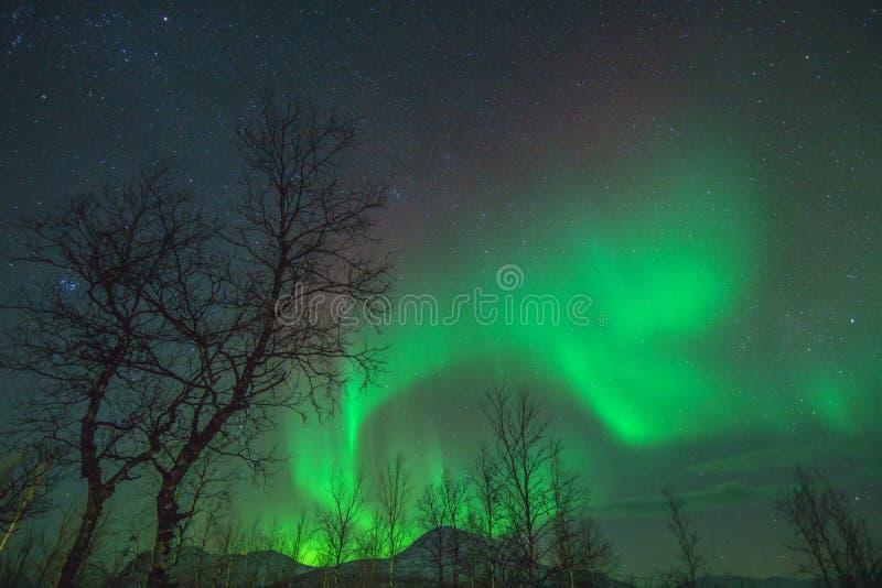 Aurora Borealis eller för nordliga ljus fenomen arkivfoto