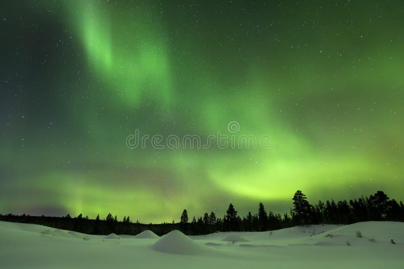 Aurora Borealis em Lapland finlandês imagens de stock royalty free