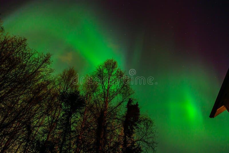 Aurora Borealis en Anchorage foto de archivo libre de regalías