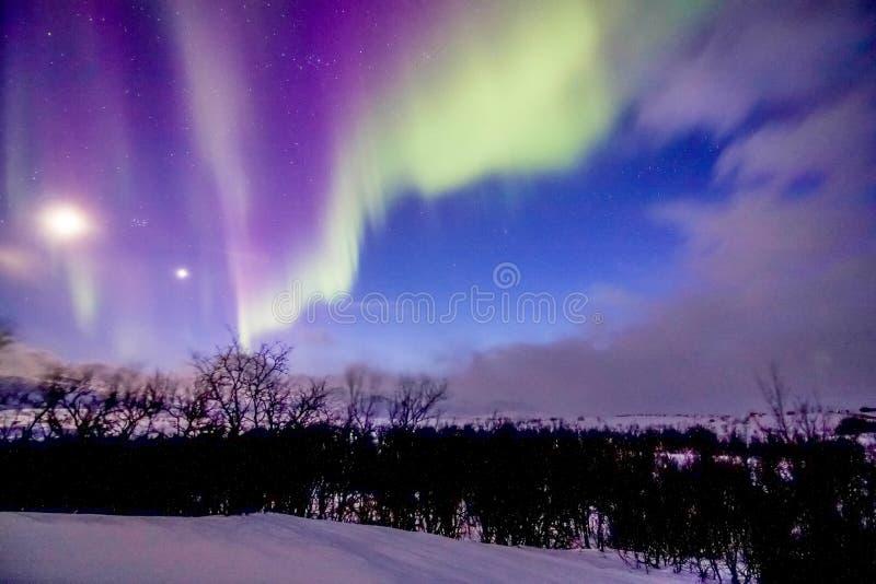 Aurora Borealis en la ciudad de Tromso Noruega fotografía de archivo