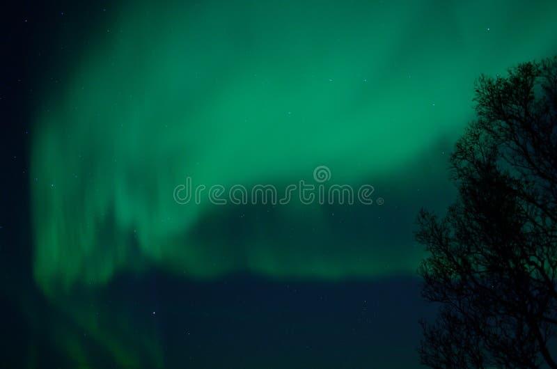 Aurora borealis forte fantástico imagem de stock