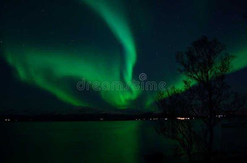 Aurora borealis forte fantástico sobre o fiorde e a montanha frios fotografia de stock