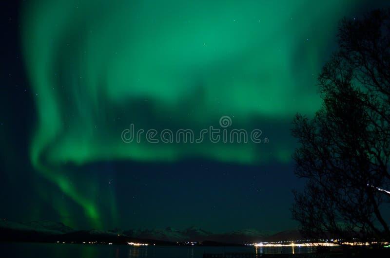 Aurora borealis forte fantástico sobre o fiorde e a montanha frios fotos de stock royalty free