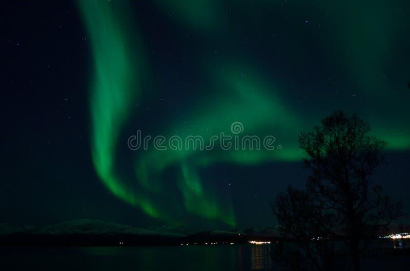 Aurora borealis forte fantástico sobre o fiorde e a montanha frios foto de stock