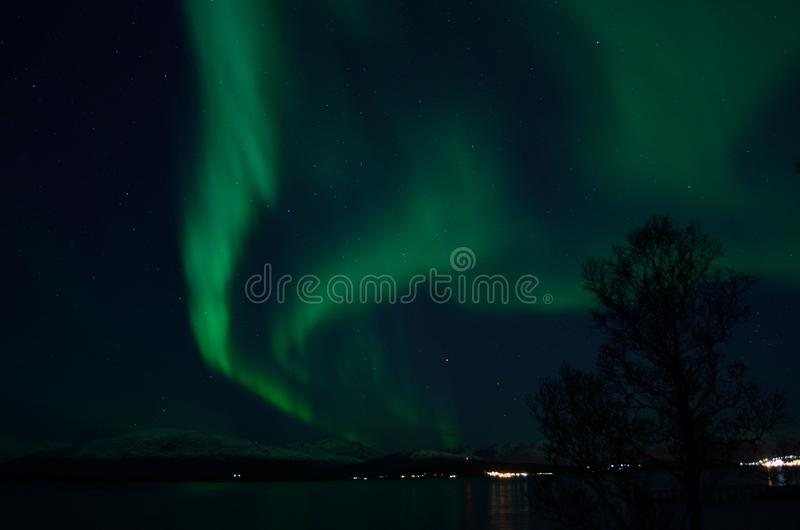 Aurora borealis forte fantástico sobre o fiorde e a montanha frios fotos de stock