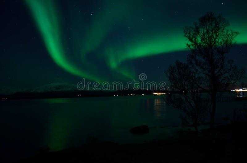 Aurora borealis forte fantástico sobre o fiorde e a montanha frios foto de stock royalty free