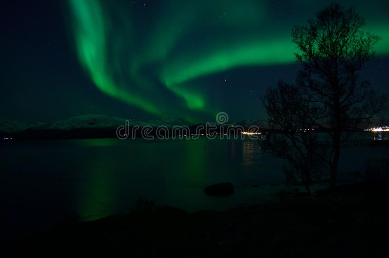 Aurora borealis forte fantástico sobre o fiorde e a montanha frios imagem de stock royalty free