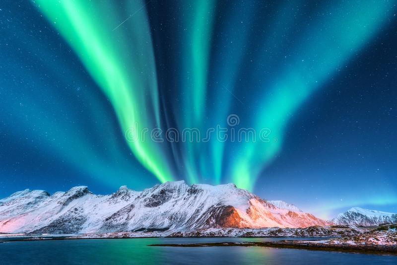 Aurora Borealis Isole di Lofoten, Norvegia aurora fotografia stock libera da diritti