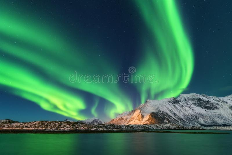 Aurora Borealis Isole di Lofoten, Norvegia aurora Indicatori luminosi nordici verdi immagine stock libera da diritti