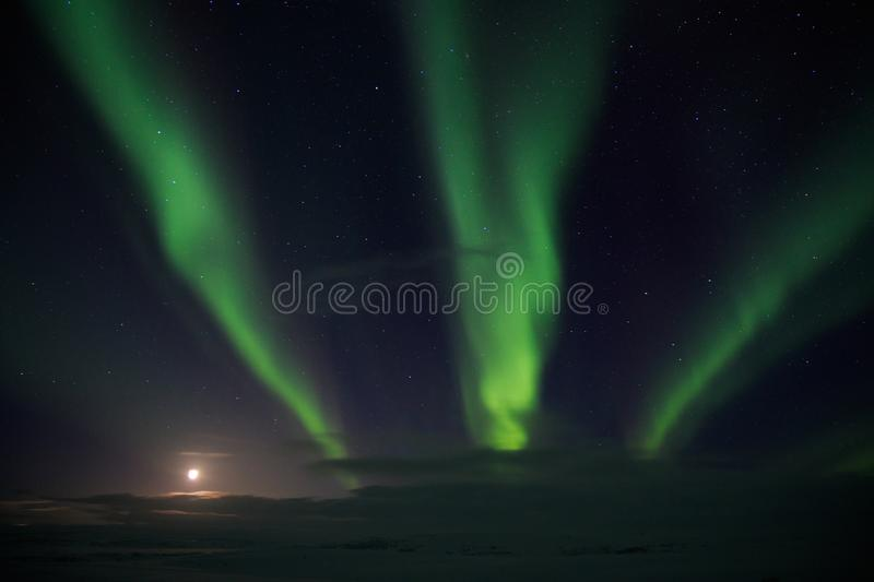 Aurora borealis lights at night in white snow tundra, Russia, North. Beautiful arctic polar landscape of green lightning lines, royalty free stock images
