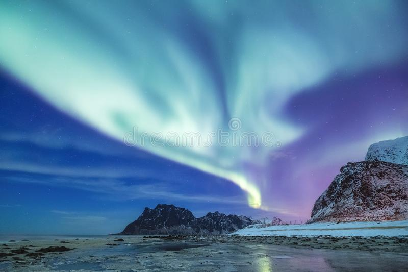 Aurora borealis on the Lofoten islands, Norway. Green northern lights above mountains. Night sky with polar lights. Night winter landscape with aurora and royalty free stock photos