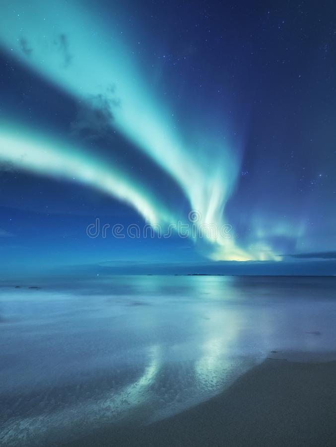Aurora borealis on the Lofoten islands, Norway. Green northern lights above ocean. Night sky with polar lights. Night winter landscape with aurora and stock photography