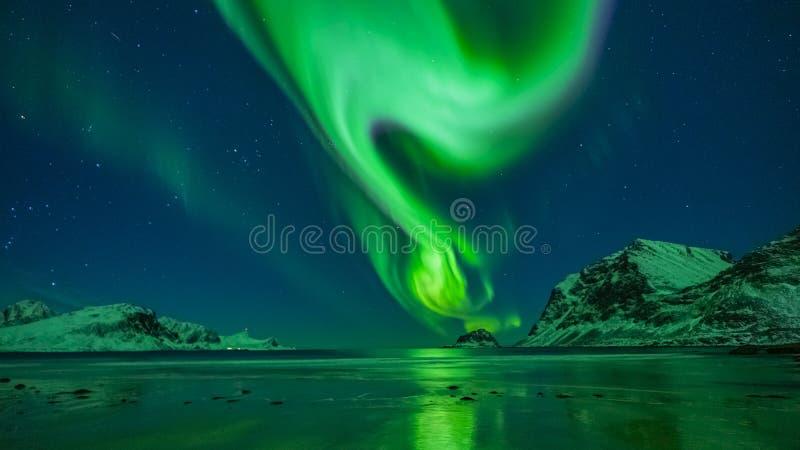 Aurora borealis Lofoten photographie stock libre de droits